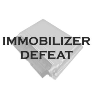 Immobilizer Defeat